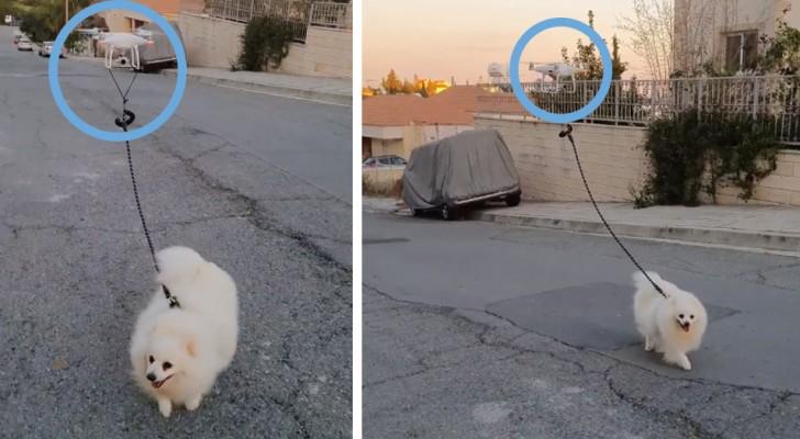 Un ragazzo porta a spasso il cane con un drone: una giocosa provocazione per ricordare a tutti di stare a casa