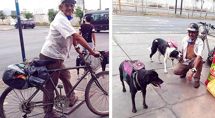 In piena pandemia, un anziano porta ogni giorno del cibo ai cani randagi della città: ha un permesso delle autorità