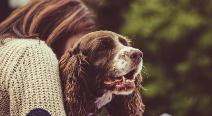Wer mit einem Hund oder einem Rind in Kontakt steht, kann mildere Symptome des Covid-19 haben: die italienische Studie