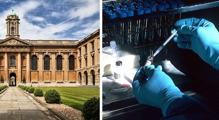 Coronavirus, Großbritannien beginnt mit der Erprobung eines Impfstoffs an Menschen: Er könnte im Herbst fertig sein