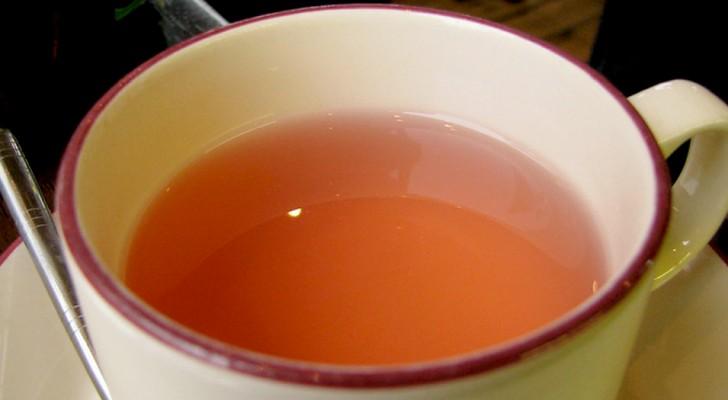 Kruidenthee met appelschillen: een natuurlijke infusie die helpt om stress te verlichten en 's nachts beter te slapen