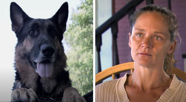Frau wird nach Autounfall bewusstlos. Ein streunender Hund bringt sie in Sicherheit