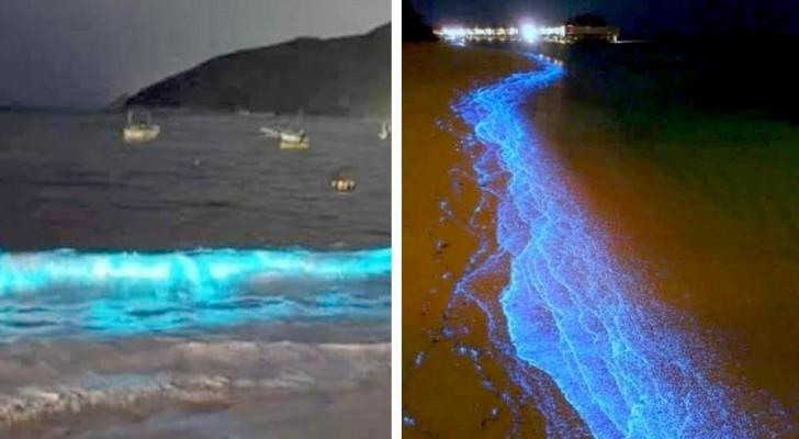 Met het blokkeren van de menselijke activiteiten, schitteren na enkele decennia de golven van het strand van Acapulco weer