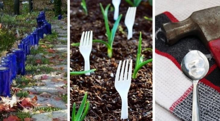 7 utili dritte di giardinaggio che possono semplificare la vita a tutti gli amanti del verde