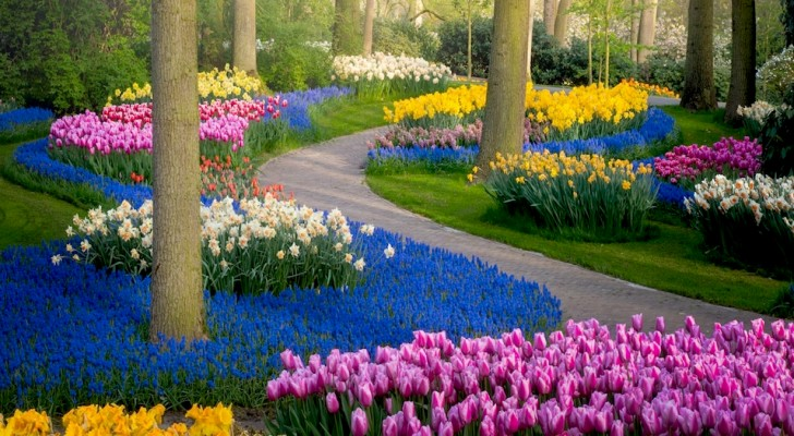 È uno dei giardini più belli al mondo: un fotografo lo ritrae in tutta la sua bellezza durante il lockdown