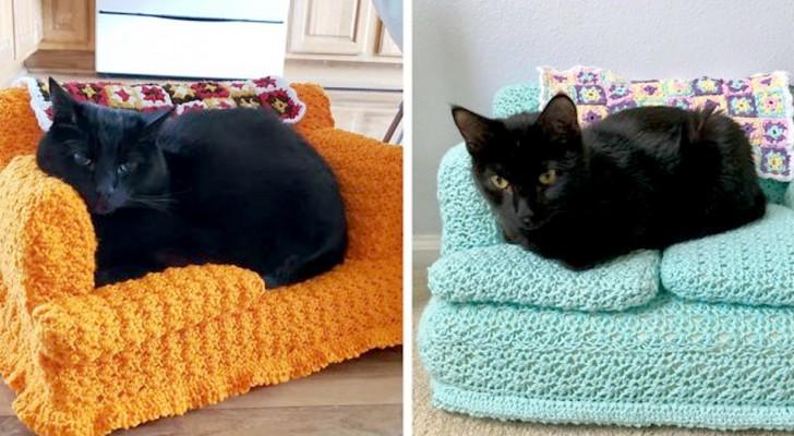 Während des Lockdowns schufen einige Leute unglaublich detaillierte gehäkelte Sofas für ihre Katzen