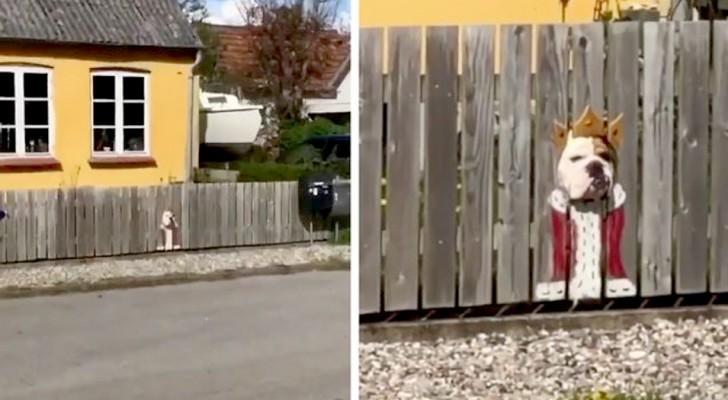 De hond kijkt altijd door het gat in het hek: zijn baasje schildert twee
