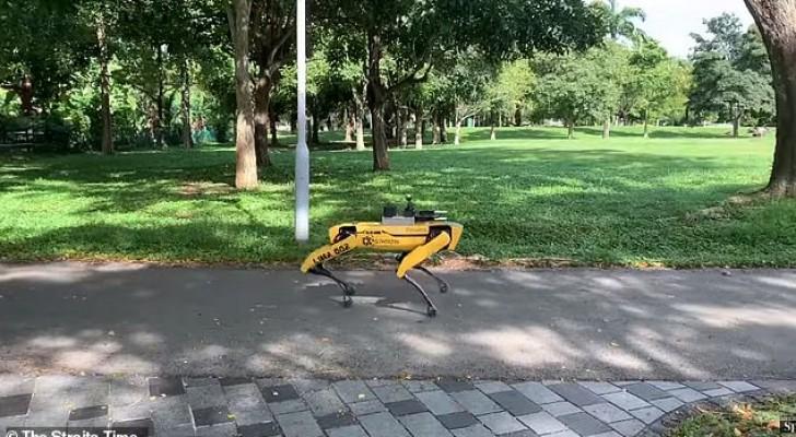 Spot, der gruselige Roboter, der in Singapurs Parks patrouilliert, um Sicherheitsabstände durchzusetzen