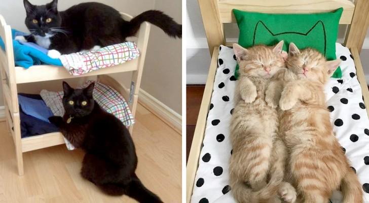 IKEA mette in vendita degli adorabili lettini di legno per bambole: le persone li acquistano per i loro gatti