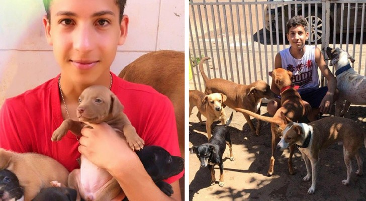 Um garoto de 17 anos realiza seu sonho de abrir um abrigo para animais abandonados