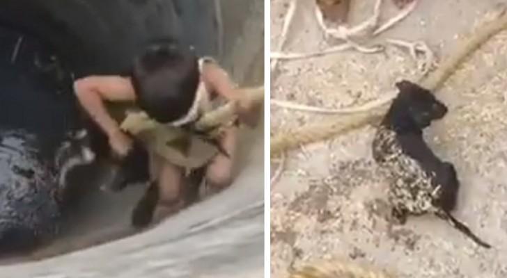 En modig liten pojke tog sig ned i en brunn för att rädda en valp som höll på att drunkna