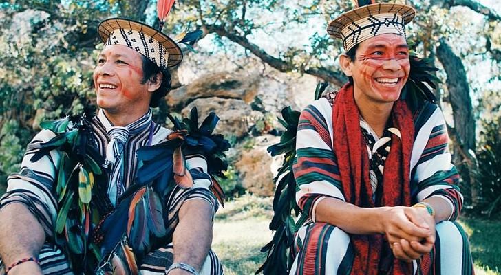 Ein Amazonas-Stamm gewinnt Prozess gegen illegale Holzfäller: 3 Millionen Dollar Entschädigung