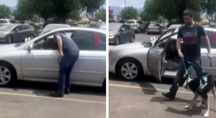 Un uomo salva un cane chiuso dentro una macchina rovente: il padrone viene accusato di crudeltà sugli animali