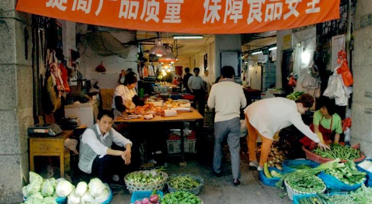 La città di Wuhan ha finalmente messo al bando il commercio di animali selvatici nei