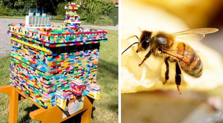 Un apicoltore ha realizzato un alveare con i mattoncini LEGO che è perfettamente funzionante