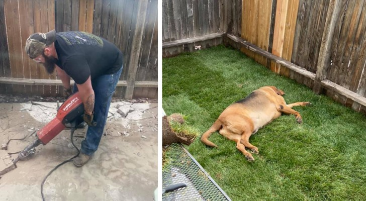 Boyfriend spends entire weekend building the perfect yard for his girlfriend's dog