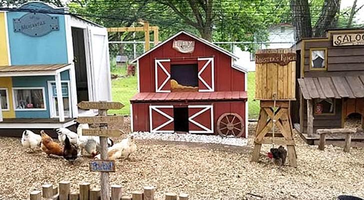 Um homem constrói uma mini-cidade para as galinhas de sua esposa: parece um set de filme de faroeste