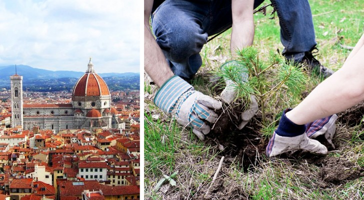 Piantare un albero per ogni vittima del Coronavirus: a Firenze un bellissimo progetto per ricordare chi non c'è più