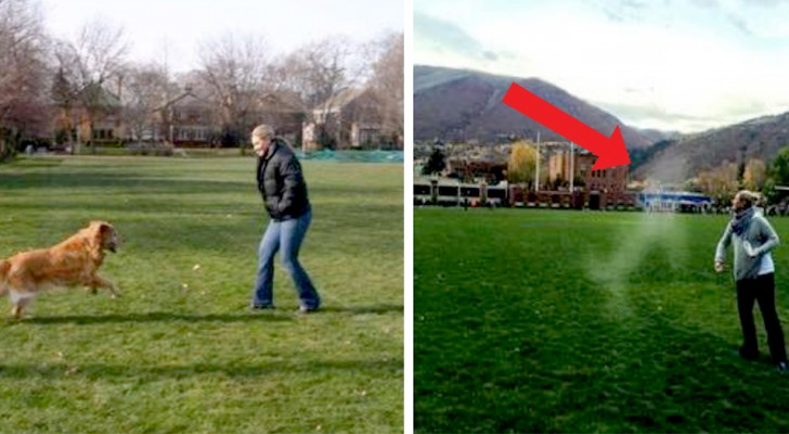 A woman scatters the ashes of her beloved dog in her favorite park: his figure appears to appear in the photo