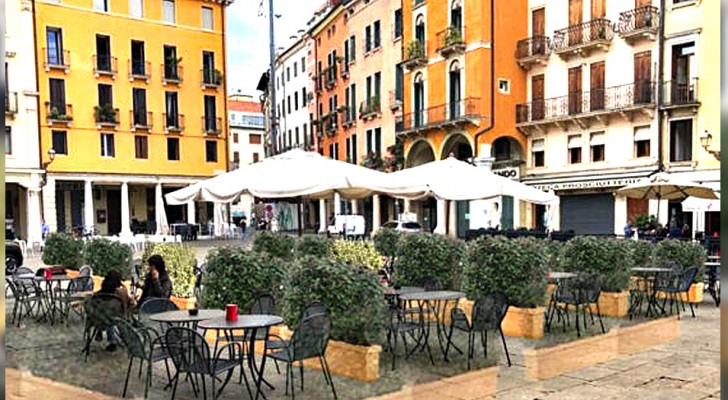 A Vicenza arrivano le siepi anti-Covid: l'esperimento che coniuga sicurezza e attenzione per l'ambiente