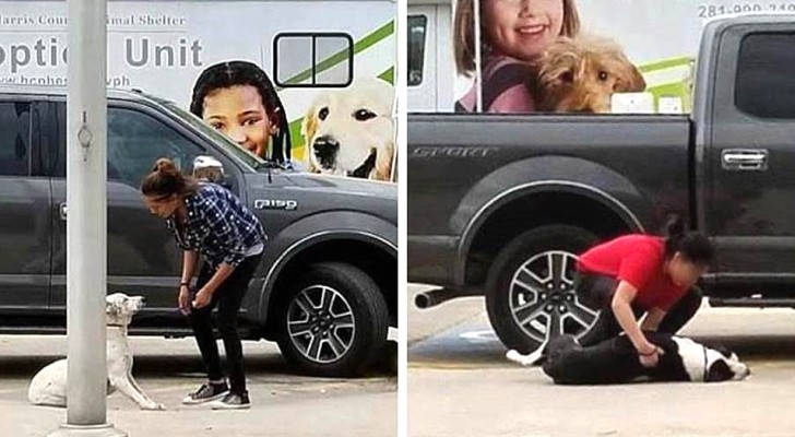 Two women laugh as they abandon their dogs in front of an animal shelter