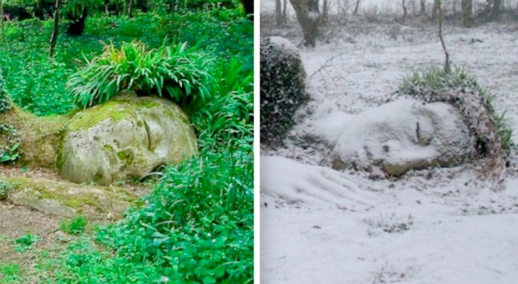 Cette sculpture fascinante ne fait qu'un avec la nature et change d'apparence selon les saisons