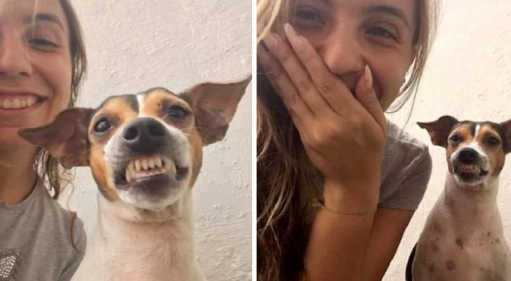 La volontaria di un rifugio scatta un selfie con il cane: lui sfodera il suo miglior sorriso