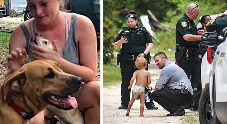 Een 3-jarige autistische jongen is verdwaald en wordt uren later gevonden: zijn honden hebben hem al die tijd beschermd