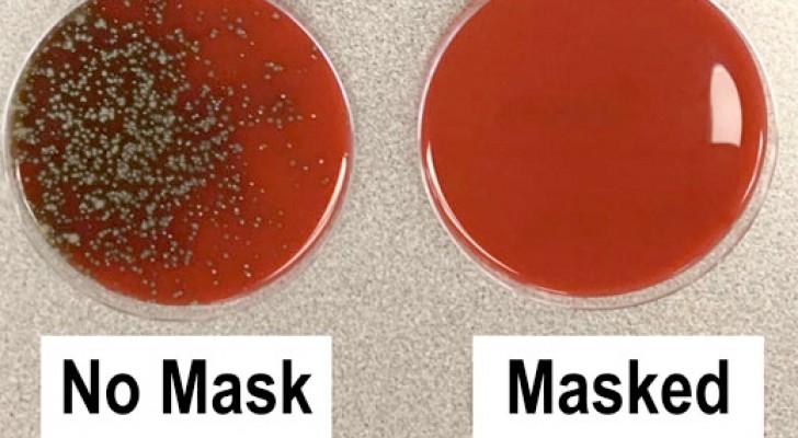 Un ricercatore dimostra in laboratorio la diffusione dei batteri nell'aria con e senza la mascherina indossata