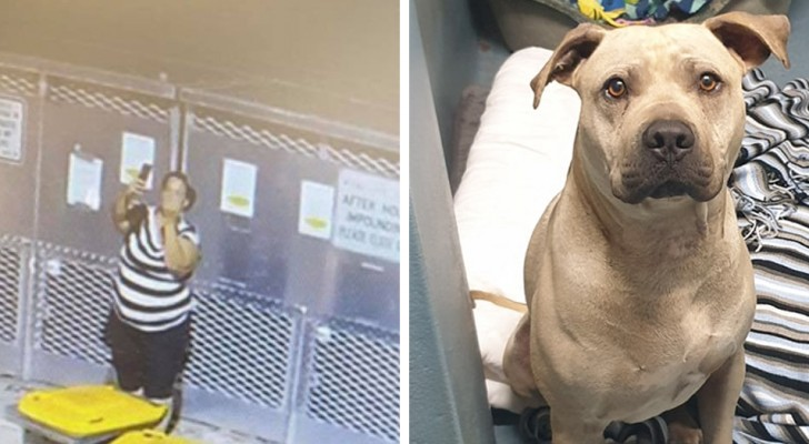 Een vrouw wordt gefilmd terwijl ze een hond in een asiel achterlaat en een foto maakt met haar middelvinger omhoog