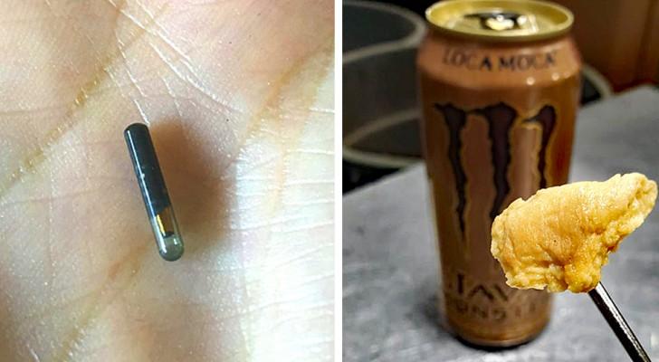 10 keer waarin mensen zich voor vreemde objecten met een