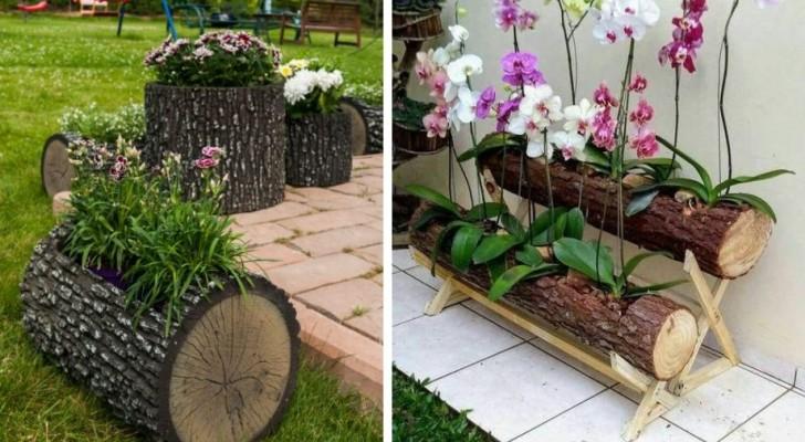 8 idee una più bella dell'altra per trasformare un tronco d'albero in una splendida fioriera da giardino