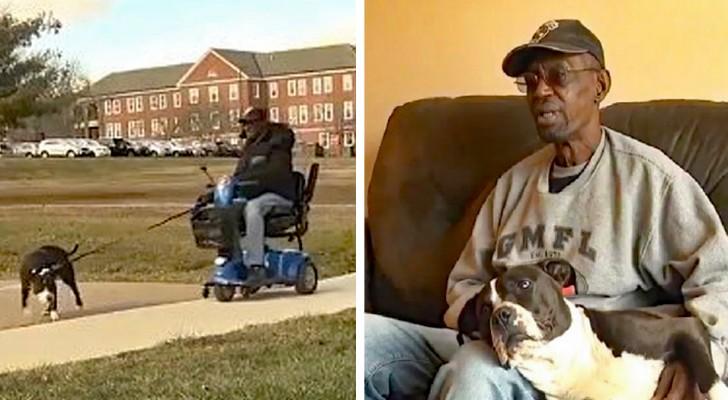 Livre-se do cachorro ou vá embora: um idoso deficiente recebe um ultimato de sua casa de repouso