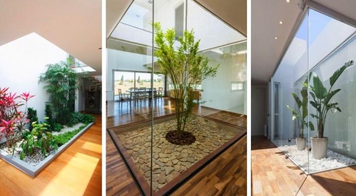 Giardini in casa: 9 soluzioni da sogno per portare la natura nei vostri ambienti e riempirli di stile
