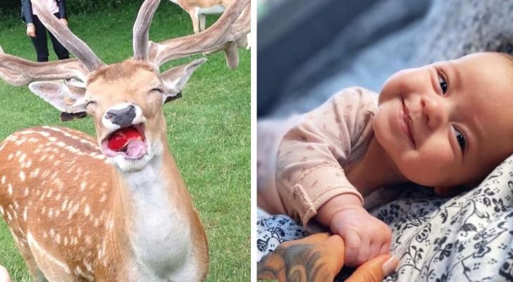 13 fotos llenas de positividad que los harán comenzar el día con una sonrisa