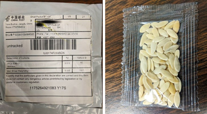 Honderden Amerikaanse burgers ontvangen per post zaden uit China die niemand ooit had besteld