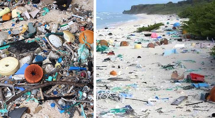 Una delle isole più remote al mondo è anche la più inquinata: il triste paradosso di Henderson