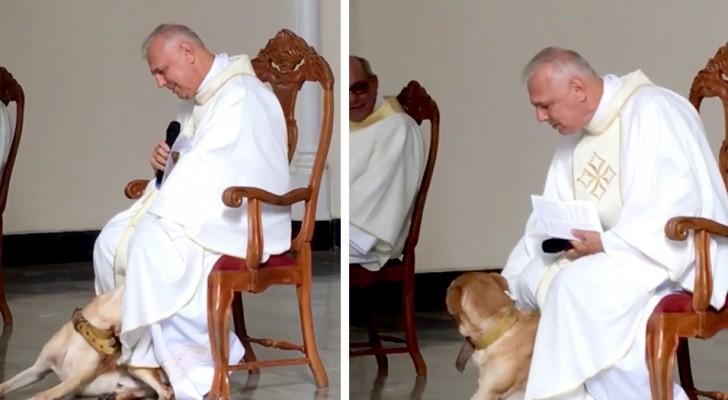 Un chien entre dans l'église pendant la messe : le prêtre ne le chasse pas et commence à jouer avec lui