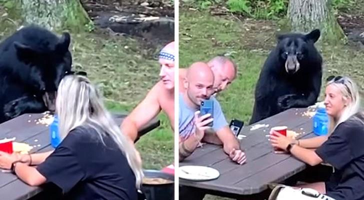 Een hongerige beer gaat verrassend bij een gezin zitten die op een rustige plek in het bos picknicken