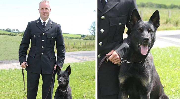 Un cane poliziotto al primo giorno di servizio riesce a trovare una donna che si era persa col suo bambino