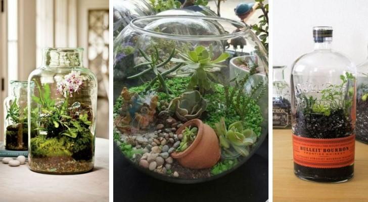 La méthode facile pour construire un terrarium DIY chez vous