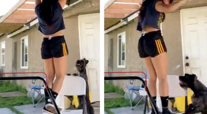 Una ragazza fa ginnastica in casa: il suo cane amorevole la crede in difficoltà e decide di aiutarla