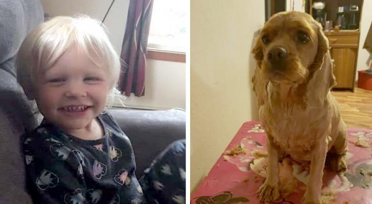 Uma menina de 3 anos desaparece por 24 horas e consegue voltar para casa graças ao cachorro que ficou ao lado dela
