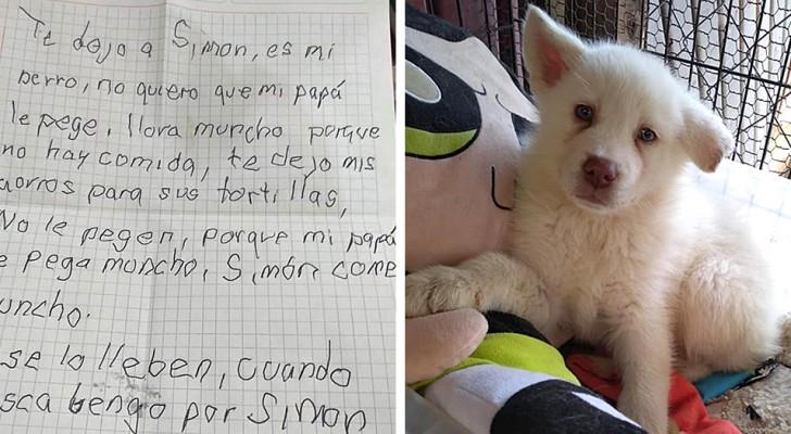 Uma criança leva seu cachorrinho até um abrigo e o deixa lá: