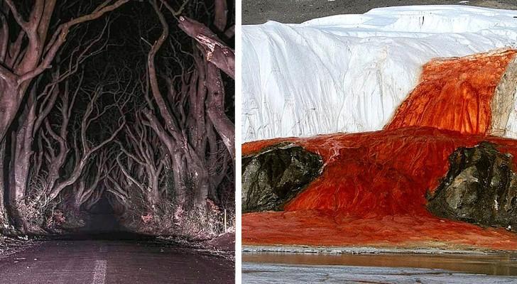 Deze verontrustende foto's bewijzen dat de natuur weet hoe ze ons klein en hulpeloos moet laten voelen