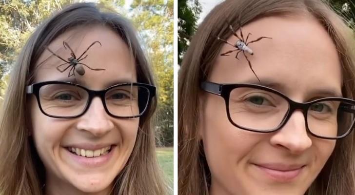 Questa ragazza si fa camminare sul viso dei ragni enormi: è il suo passatempo per rilassarsi