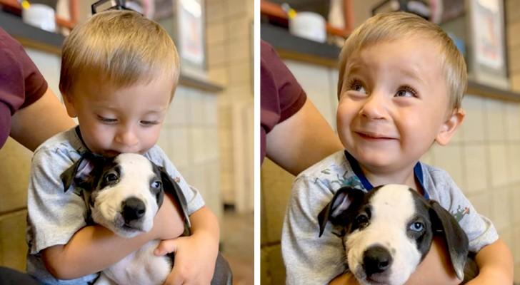 Ein Kind mit Hasenscharte adoptiert einen Welpen mit derselben Fehlbildung: Sie trennen sich nie voneinander