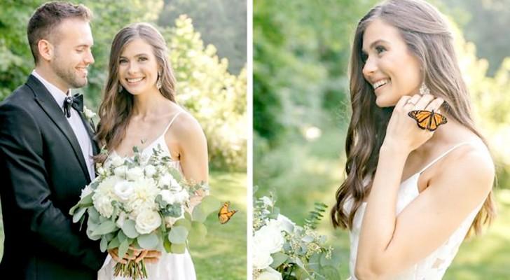 Pendant la séance photo, un magnifique papillon se joint aux mariés : les photos semblent sortir d'un conte de fées