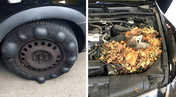 Questi meccanici hanno pubblicato le foto delle auto più disastrose che i clienti hanno portato in officina