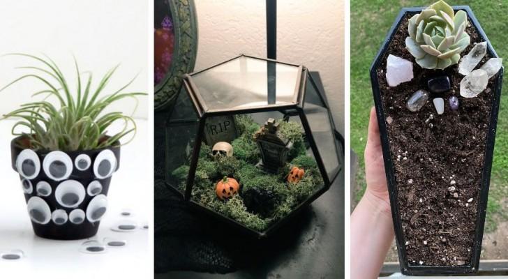 Halloween: 11 trovate brillanti per decorare in modo spettrale con le piante